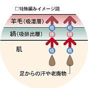 ウールとシルクの2重構造イメージ図