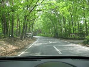 いそちゃん軽井沢の林道を走る